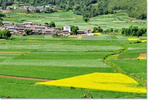 农村集体资产将受到管理,发展之路将越来越好,大家一定要了解