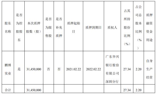 鹏博士股东鹏博实业质押3145万股 用于自身生产经