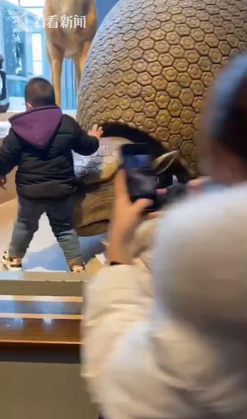 视频|博物馆当游乐场?孩子展区内攀爬 家长不管还拍照