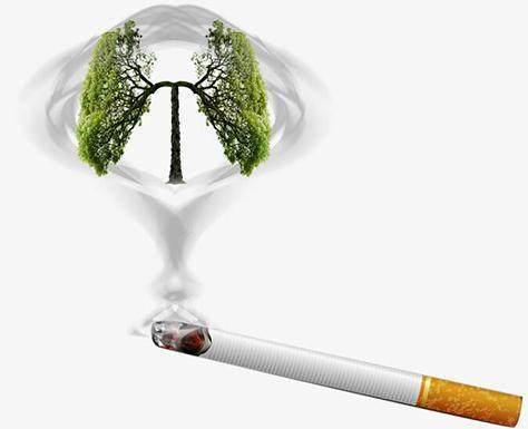 """别嫌它丑,却是尼古丁的""""克星"""",经常吃一点,助你排出肺部烟毒"""