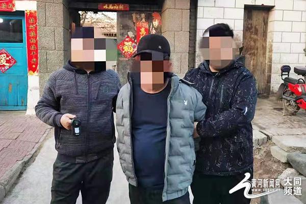 两名男子砸车玻璃盗窃被巡特警支队民警成功抓获