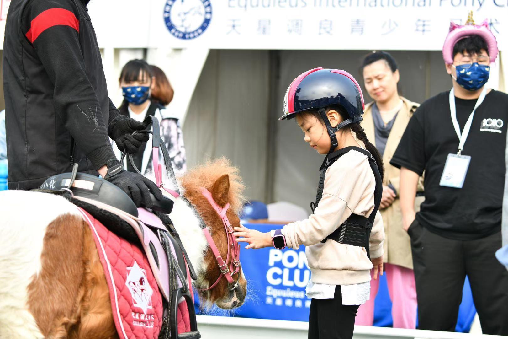 天星调良传统大赛引领马术生活时尚 携《骑马看中国》塑造马产业品质生态