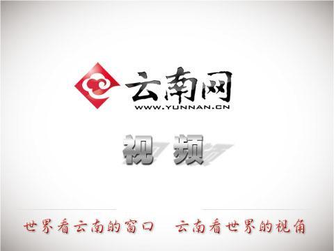 首届中国爨体书法临创作品展在昆明开幕