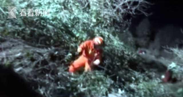 SUV坠入20米悬崖 三月大婴儿被压车下奇迹生还