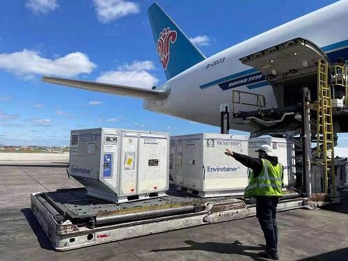 南航全货机从美国温控运输抗癌药到上海