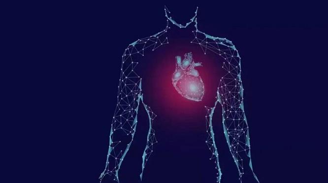 心源性猝死频繁发生?上海德达医院提醒您这些知识点要抓紧学习