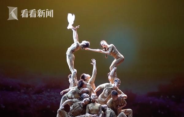视频 探班杂技剧《战上海》 申䒕雅带你了解如何驯鸽