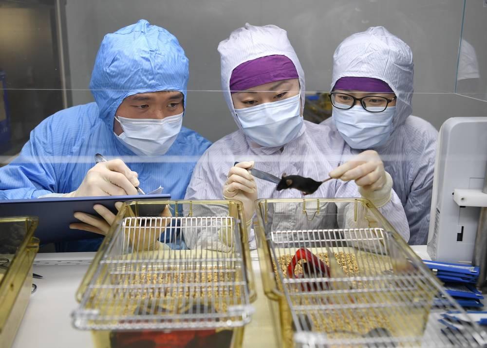 该如何善待实验动物?上海肿瘤医院有个暖心的实验动物中心