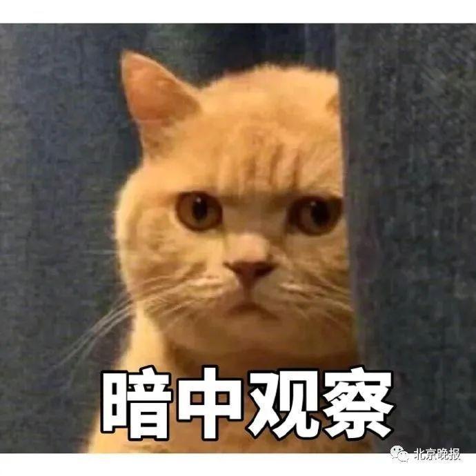 3.0版本骗局出现,北京有企业负责人被骗50万!民警揭秘——