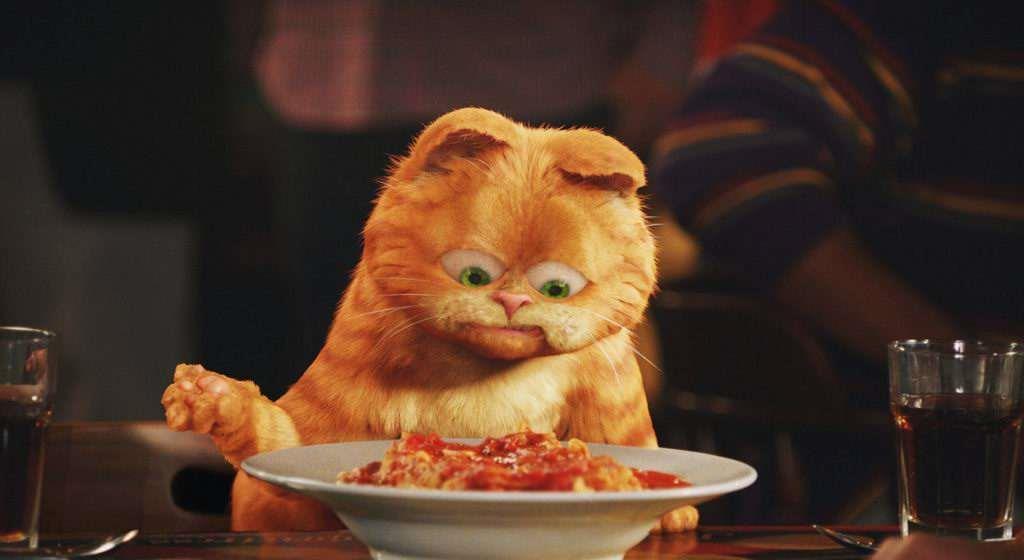 喵星人才是主角,你是否也想养一只这样的猫呢?