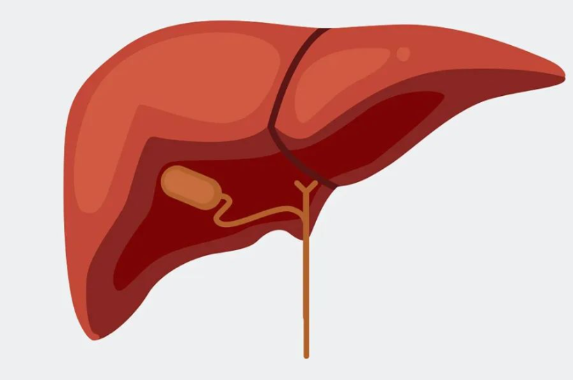 """烂肝""""大户""""被发现,喝酒不在首位,医生苦劝:不想肝癌找上门,尽量远离"""