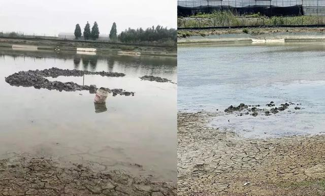 不明物坠落浙江嘉善鱼塘,调查结果来了,是遇水即化了吗?