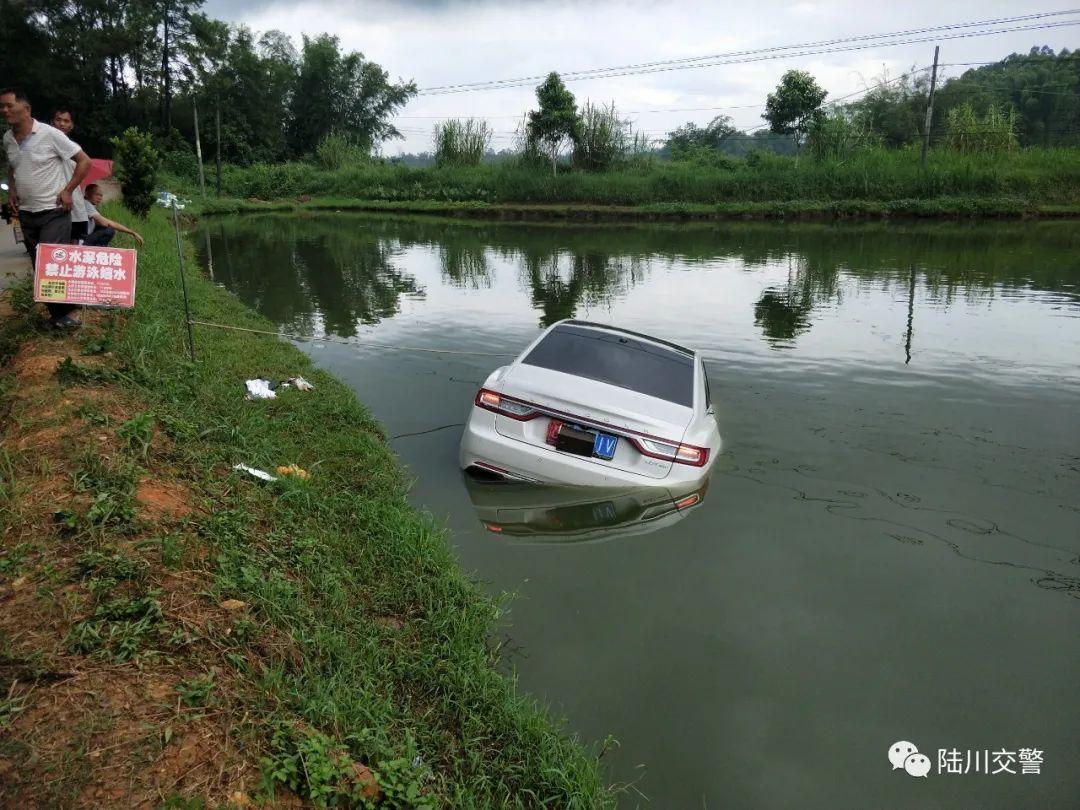小车径直开下鱼塘,什么况?视频记录下惊险一幕