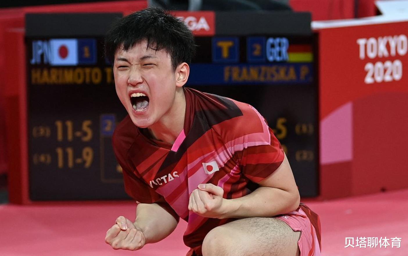 中国球迷膜拜日本男乒?名嘴:张本智和满地打滚,每得1分杀猪叫