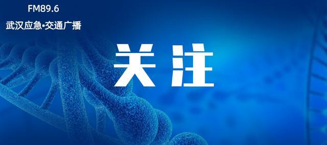 中国质量领域最高荣誉!武汉又有4家组织获奖