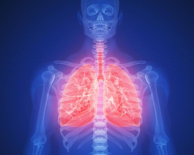 肺不好不能吃茄子?医生提醒:养肺护肺,5种食物可以多吃一点