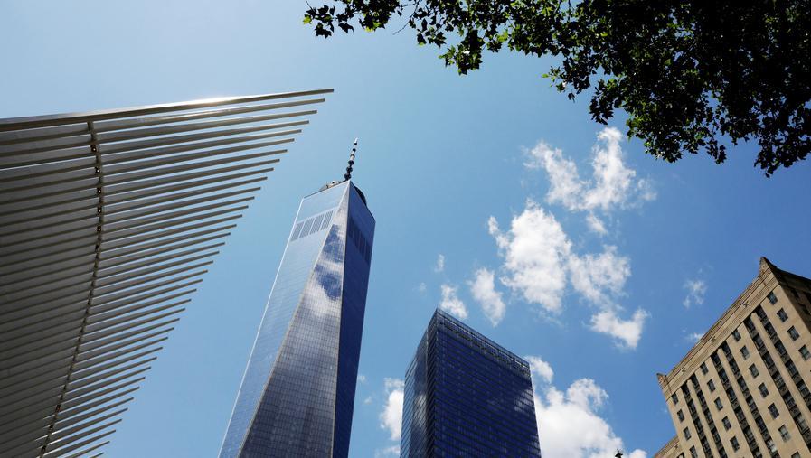 新一轮巨大灾难迹象?数百只鸟撞美国高楼自杀,纽约街头人心惶惶