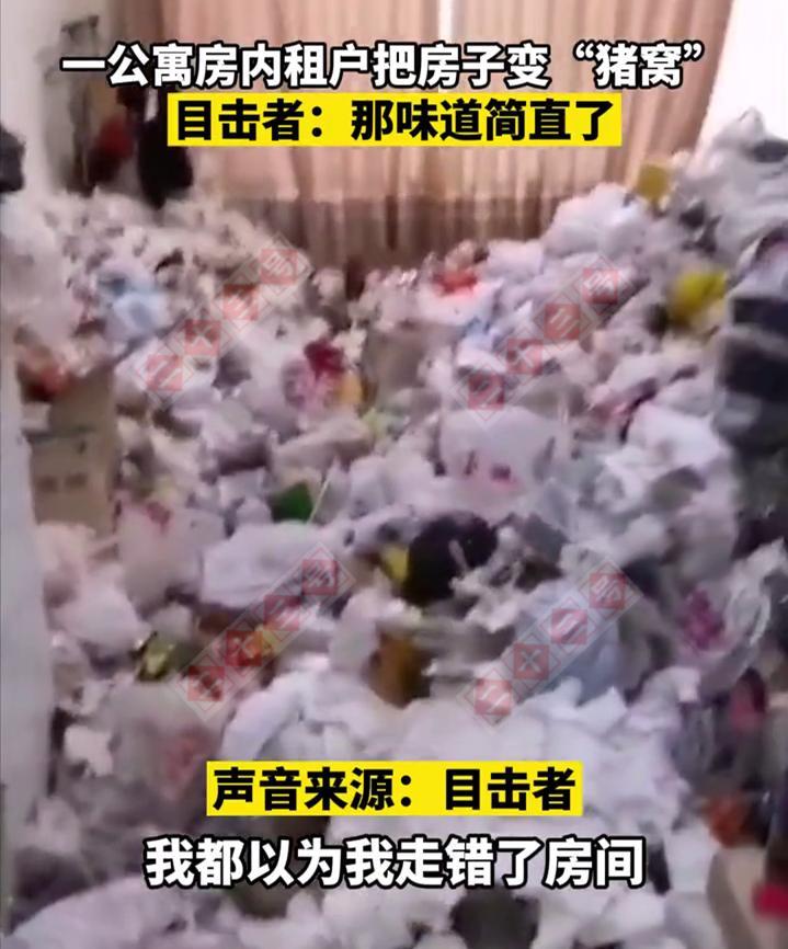 """江苏一小伙租房不打扫卫生,导致公寓变""""猪圈"""",保洁看到直接崩溃"""