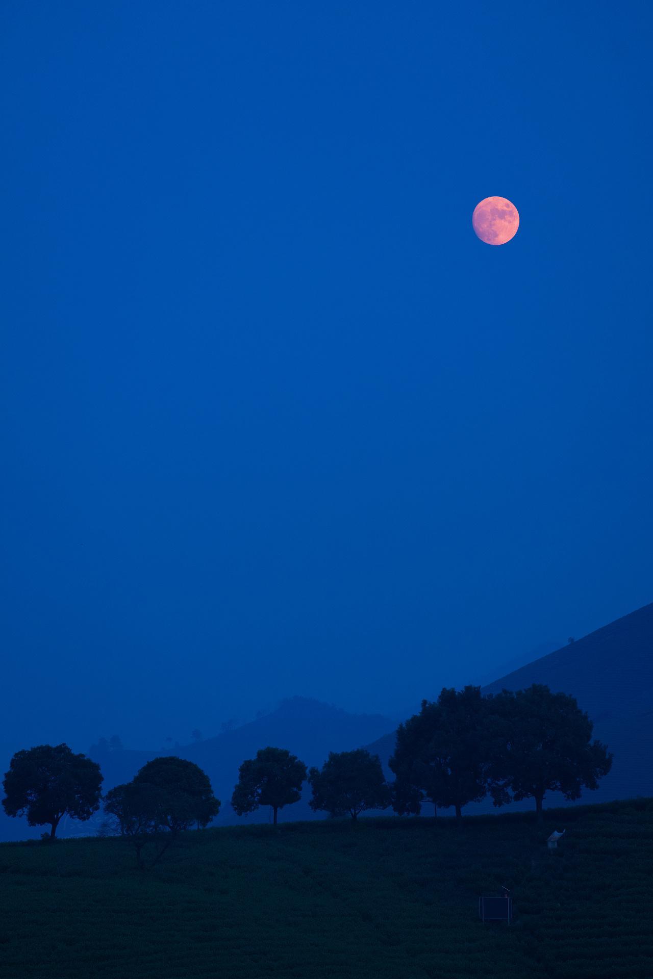 刚才的月亮,因为有些雾霾的原因,变成了粉月亮
