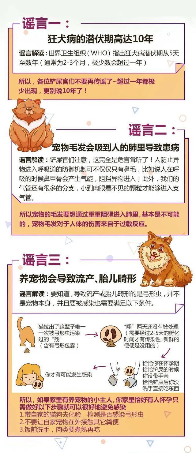 这些盛传在宠物界的谣言,你听说过吗?