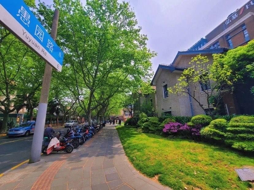 """在上海长宁举行的这个论坛上 """"沪苏浙皖""""畅想城"""