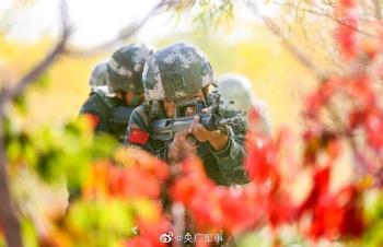 酷!武警特战队员沙漠开展捕歼战斗训练