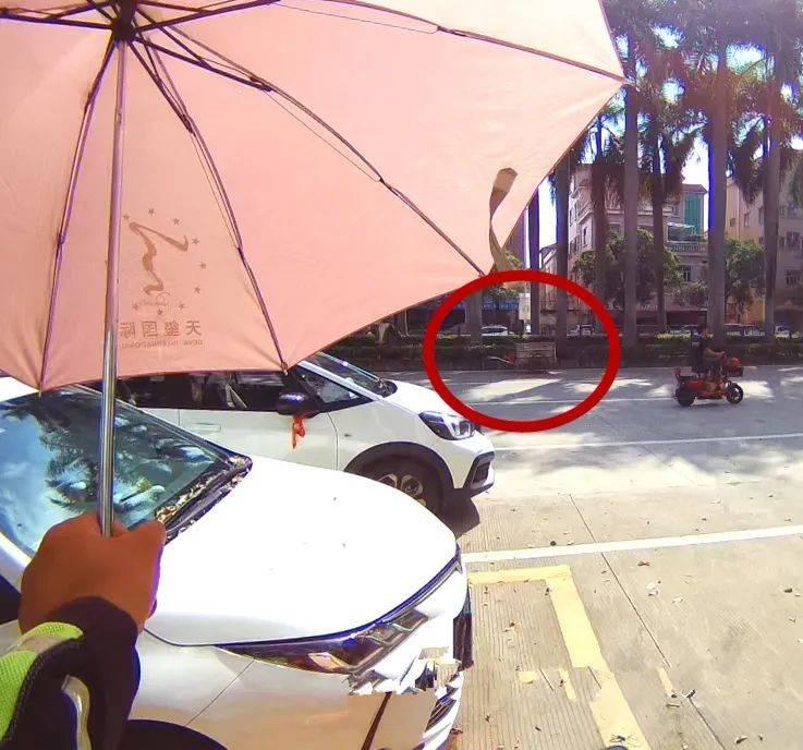 紧急!环卫工被马蜂蛰晕,一场生死营救在东莞街头展开…