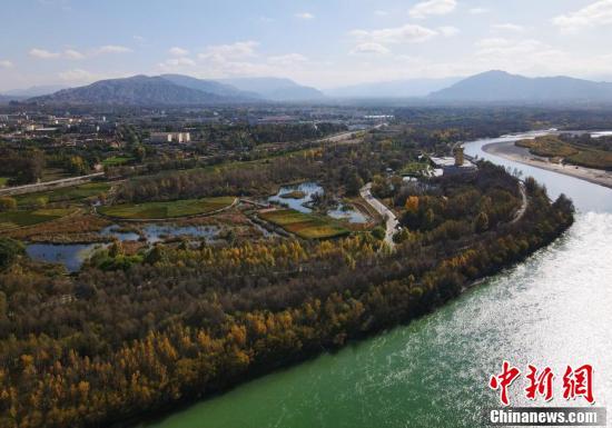 【母亲河畔的中国】青海:黄河岸畔水生态修复效果显著