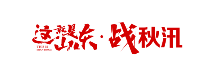 这就是山东·战秋汛丨东平县戴庙镇:三线作战 力保