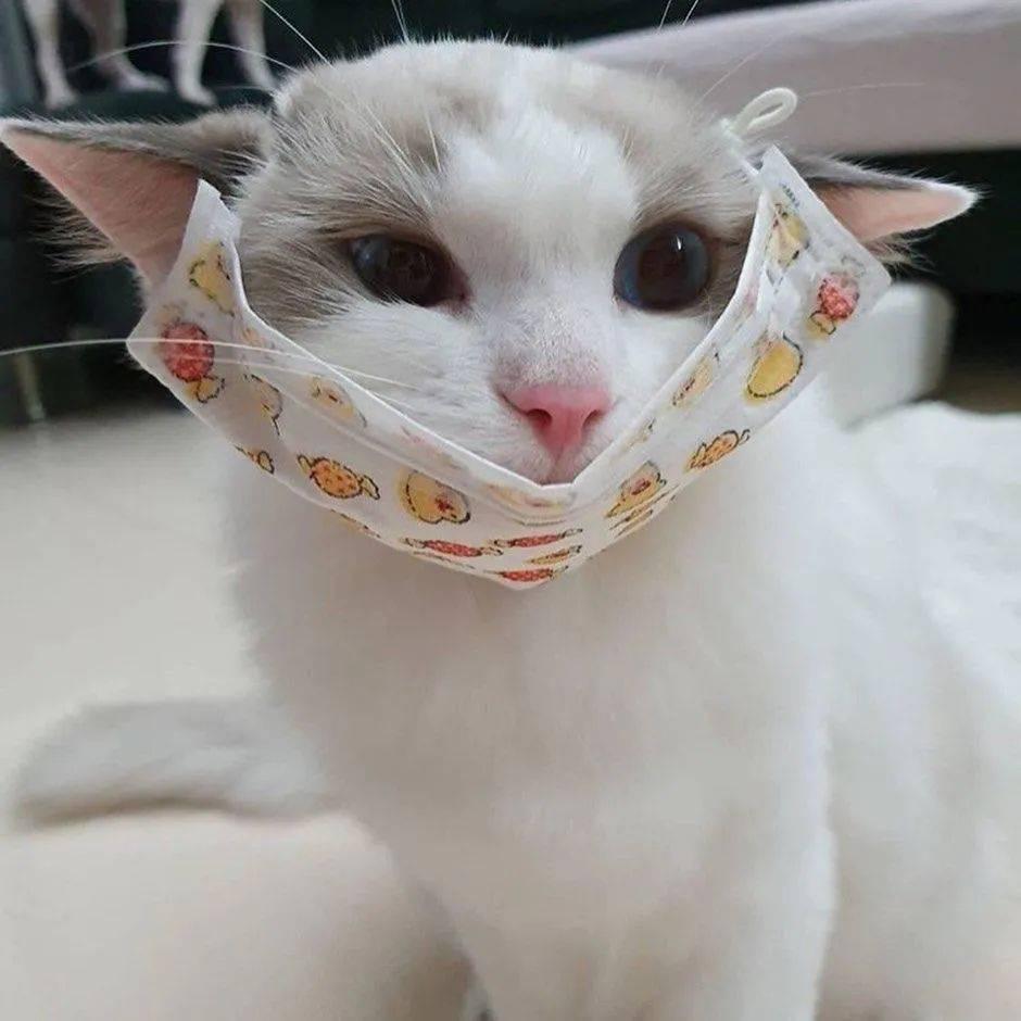 提醒!这样佩戴口罩会增加传染风险!请正确佩戴口罩!