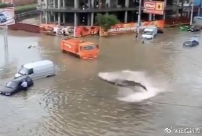 紧急辟谣!关于郑州暴雨的这些消息都别信