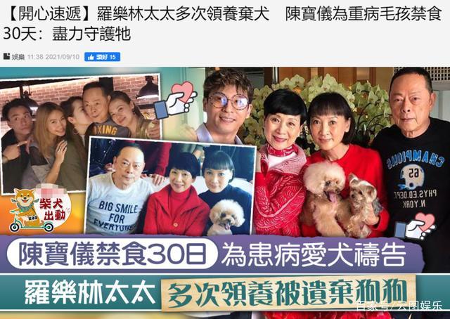 世纪官方登录:老戏骨陈宝仪为重病爱犬禁食30天祈祷,坦言:想它留在身边多几天